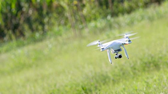 Ein Drohne vor grünem Hintergrund