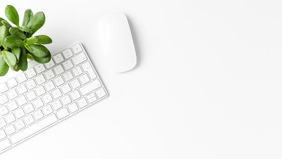 Eine Pflanze, eine Computermaus und eine Tastatur