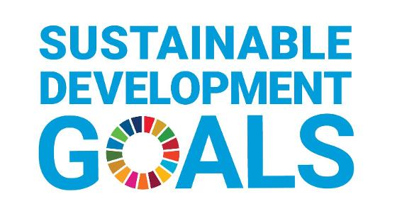 Logo der Sustainable Development Goals (SDG)