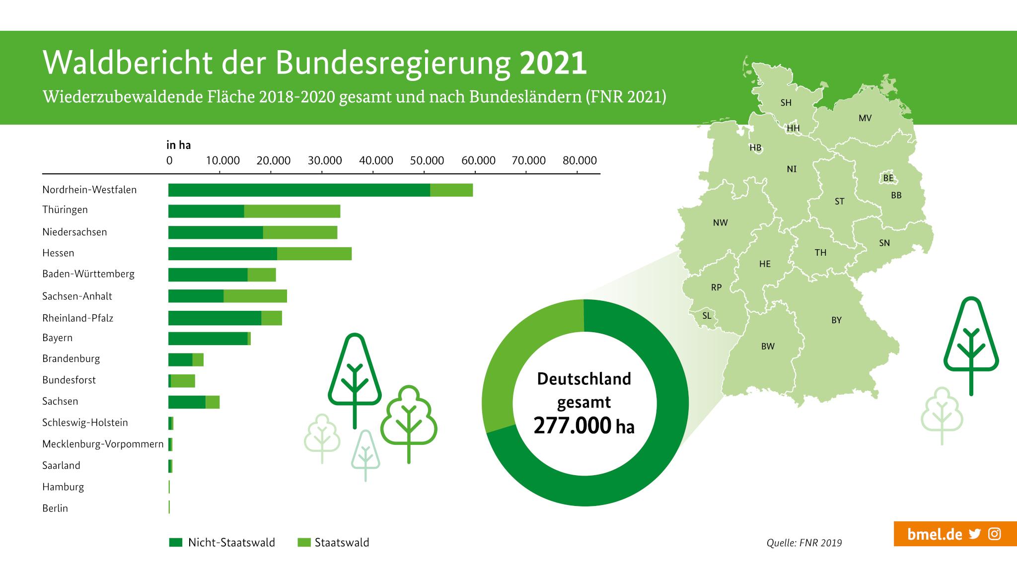 BMEL   Wald in Deutschland   Waldbericht der Bundesregierung 20