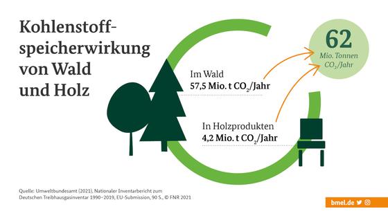 Графічне зберігання вуглецю в лісі 57,5 млн тонн на рік, виробництво деревини 4,2 млн тонн на рік, загалом 62 млн тонн