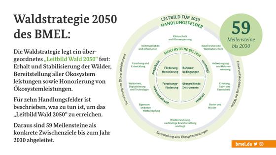Графік десяти полів дій до 2050 року та 59 етапів до 2030 року