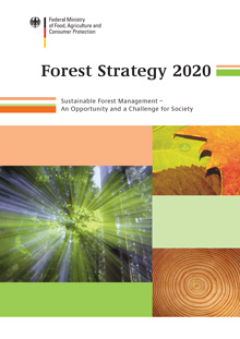 Cover Brochure Forest Strategy 2020