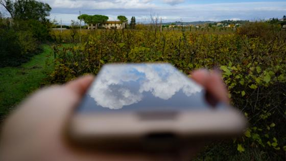 A smartphone screen reflects the sky, in the background a garden