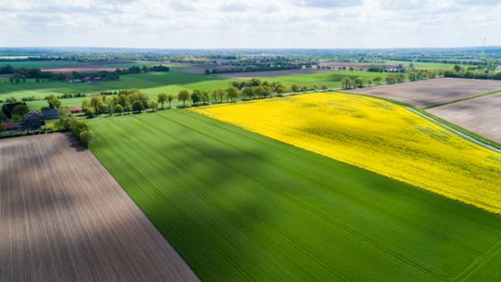 Arable land from a bird's eye perspective
