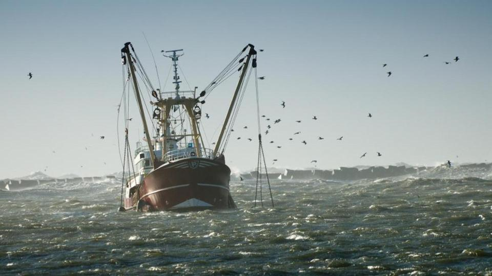 Fish trawler with nets in the water, surrounded by seagulls